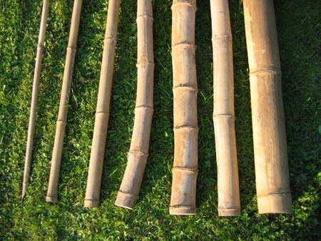 Bambusrohre f r deko bambuskonstruktion tahas - Bambusrohre deko ...